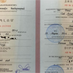 The Tale of 3 Countries and Fake Degree | ACEI-Global