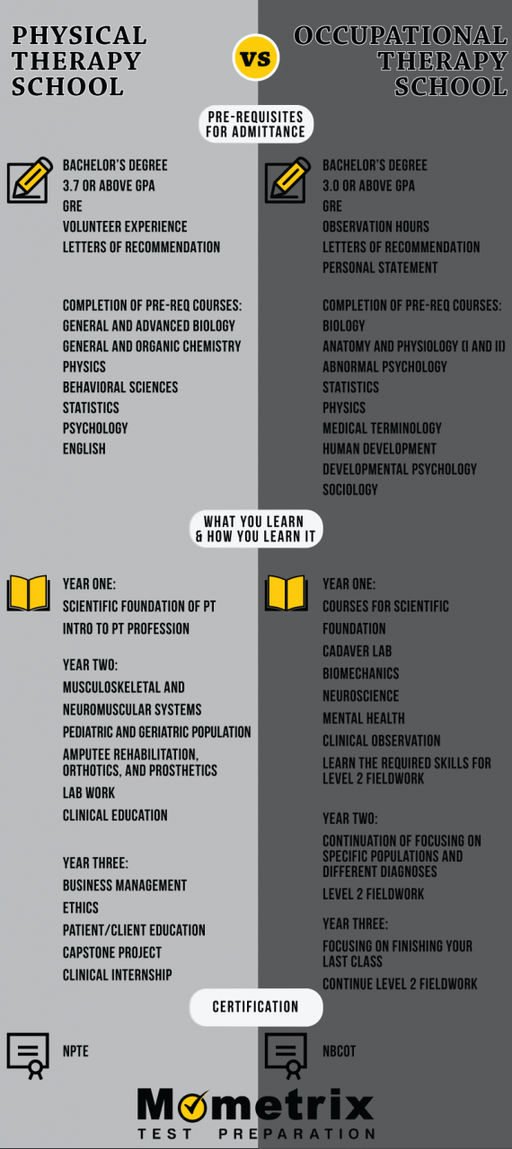 Physical Therapy School vs. Occupational Therapy School - Mometrix Blog