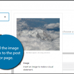 How to Add a Caption to a Photo in WordPress and Why - GreenGeeks