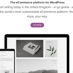 Squarespace vs WordPress: Which Is Best for You in 2021?