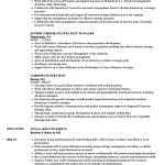 Corporate Strategy Resume Samples in 2021   Sales resume examples, Job  resume examples, Engineering resume