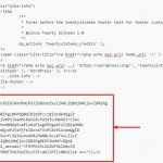 How to Remove Malware from WordPress | SEO North