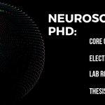 What Can I Do With a Neuroscience Degree? - DegreeQuery.com